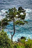 Foto Resort La Francesca Resort_La_Francesca_035