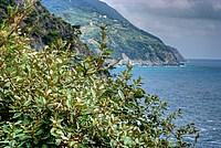 Foto Resort La Francesca Resort_La_Francesca_036