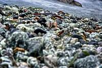 Foto Resort La Francesca Resort_La_Francesca_071