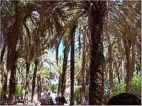 Foto Spagna e Portogallo spagna_portogallo_059