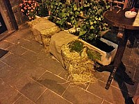 Foto Stop Hoe Band - Cena Stagione 2014 StopHoeBand_2014_005