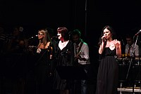 Foto Stop Hoe Band - Reunion 2014 Bedonia Stop_Hoe_Band_Bedonia_2014_249