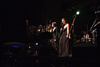 Foto Stop Hoe Band - Reunion 2014 Bedonia Stop_Hoe_Band_Bedonia_2014_260