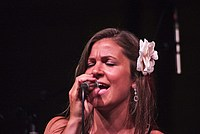 Foto Stop Hoe Band - Reunion 2014 Bedonia Stop_Hoe_Band_Bedonia_2014_339