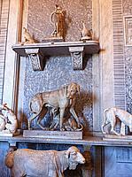 Foto Vacanza Roma - Musei Vaticani Musei_Vaticani_037
