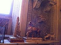 Foto Vacanza Roma - Musei Vaticani Musei_Vaticani_041