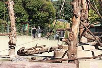 Foto Vacanza Roma - Zoo Roma_562