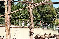 Foto Vacanza Roma - Zoo Roma_564