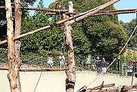 Foto Vacanza Roma - Zoo Roma_565