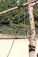 Foto Vacanza Roma - Zoo Roma_566