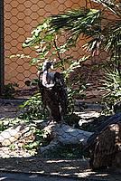 Foto Vacanza Roma - Zoo Roma_578