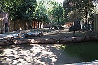 Foto Vacanza Roma - Zoo Roma_587
