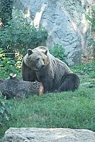 Foto Vacanza Roma - Zoo Roma_616