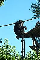 Foto Vacanza Roma - Zoo Roma_631