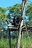Foto Vacanza Roma - Zoo Roma_633