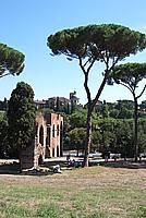 Foto Vacanza Roma Roma_089
