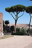 Foto Vacanza Roma Roma_130