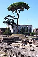 Foto Vacanza Roma Roma_133