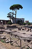 Foto Vacanza Roma Roma_134
