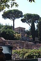 Foto Vacanza Roma Roma_189