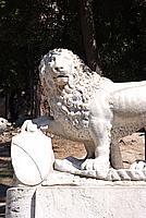 Foto Vacanza Roma Roma_437