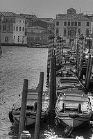 Foto Venezia 2012 Venezia_083
