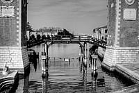 Foto Venezia 2012 Venezia_115