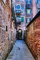 Foto Venezia 2012 Venezia_190