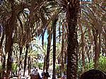Foto Viaggio Spagna - Portogallo Spagna_Portogallo_059