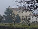 Foto Vicenza Vicenza_230