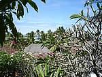 Foto Zanzibar Zanzibar 2005 164